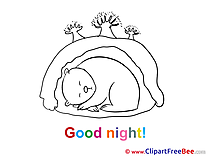 Den Bear free Illustration Good Night