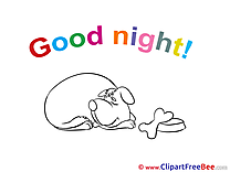 Dog download Good Night Illustrations