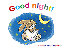 Rabbit Moon Stars Pics Good Night Illustration