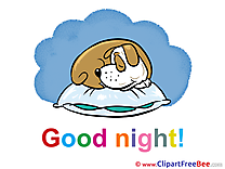 Sleeping Dog Good Night download Illustration