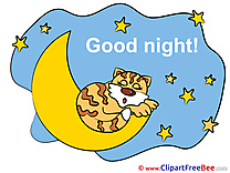 Tiger Moon Stars Clip Art download Good Night