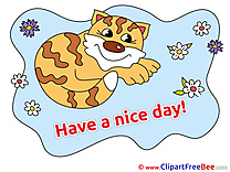 Cat Have a Nice Day Illustrations for free