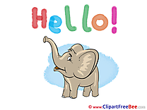 Baby Elephant Cliparts Hello for free