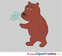 Bear free Cross Stitches download