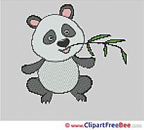 Koala Cross Stitches free