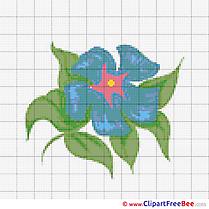 Design Flower Cross Stitches free