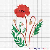 Poppy Design Cross Stitches free