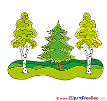 Forest Clipart free Illustrations