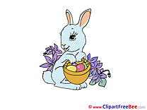 Bunny Clipart Easter free Images
