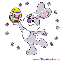 Feast Hare Pics Easter free Image