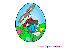 Rabbit download Clipart Easter Cliparts