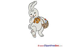 Rabbit Easter Egg Illustrations for free