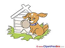 Dog Pics free download Image