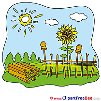Fence Sunflowers Sun Images download free Cliparts