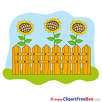 Palisade Sunflowers download Clip Art for free