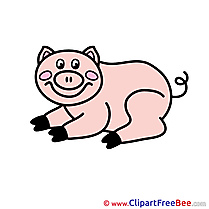 Piggy free Illustration download