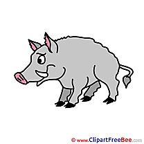 Wild Boar Cliparts printable for free