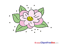 Lily download Clipart Flowers Cliparts