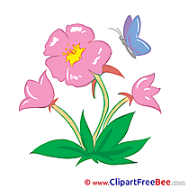 Marshmallow free Cliparts Flowers