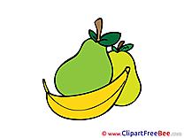 Fruits free Illustration download
