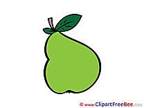 Pear Clip Art download for free