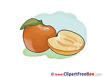 Apricot Pics free Illustration