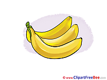 Bananas Pics free Illustration