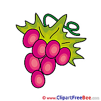 Berry Grape Images download free Cliparts