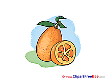 Fruit Leaves printable Illustrations for free