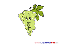 Grape Clip Art download for free