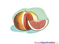 Grapefruit Pics printable Cliparts