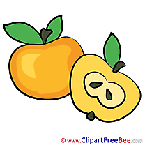 Half Apple Pics free Illustration