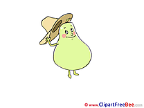 Hat Pear Pics download Illustration
