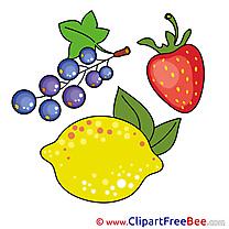 Illustration Fruits Lemon Currant Clipart free