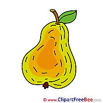 Image Pear Pics free Illustration