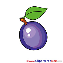 Plum Cliparts printable for free