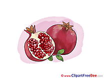 Pomegranate Cliparts printable for free