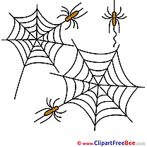 Arachnida Spiders Web free Illustration Halloween