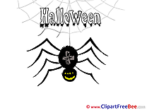 Black Widow Spider Cliparts Halloween for free