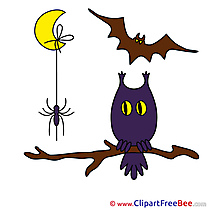Branch Spider Bat Moon free Cliparts Halloween