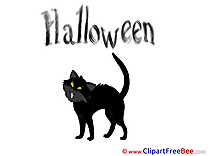 Cat Halloween Illustrations for free