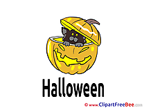Kitten Pumpkin Pics Halloween free Cliparts