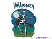 Skeleton Night Pics Halloween Illustration