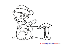 Cat with Present free Illustration New Year