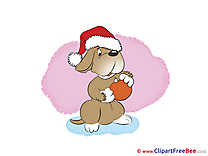 Dog Ball New Year Clip Art for free