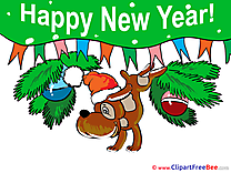 Dog New Year free Images download