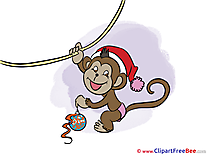Hanging Monkey New Year Illustrations for free