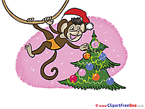 Monkey Tree Pics New Year free Cliparts