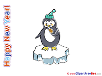 Penguin free Illustration New Year