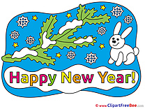 Rabbit Winter Cliparts New Year for free